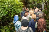 "Guided Tour for People with Disabilities Through the Botanical Garden of the Moscow State University ""Aptekarsky Ogorod"""